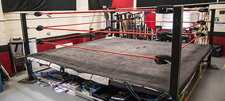 Wrestling Workouts At The Gym Eoua Blog